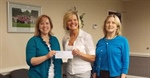 2013 GRANT TO DANVILLE-PITTSYLVANIA COUNTY COMMUNITY SERVICES BOARD